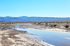 Amargosa River South (upstream), Death Valley, January 2016 (Bob Palin) Tags: california usa southwest water 510fav river landscape nationalpark desert outdoor rivers deathvalley club100 100vistas instantfave canonef24105mmf4lisusm amargosariver orig:file=2016012804886