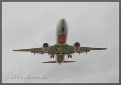 PH-HZE Boeing 737-8K2(W) Transavia Airlines (elevationair ) Tags: clouds airplane cloudy aviation overcast landing boeing arrival dub transavia airliners 737 dublinairport 738 bellyart avgeek eidw phhze transaviaairlines bellytitles