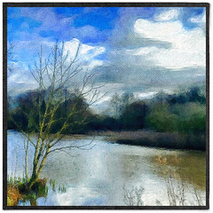 Day 43 of 366 - Lonely Lakeside Tree! (editsbyjon) Tags: sky painterly water outdoor digitalart serene coventry iphone brushstroke photoboarder iphone365 phototoaster vividhdr