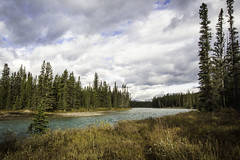Bow River, Banff National Park (Bluesilver85) Tags: park trees sky mountain canada mountains nature clouds river relax landscape landscapes cloudy fiume national bow banff paesaggio lovecanada