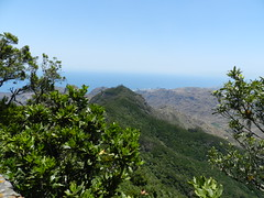 Mirador Pico del Ingles
