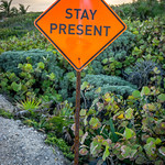 Stay Present in Tulum