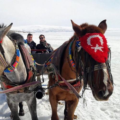 Çıldır Gölü, Ardahan  #yoldaolmak #çıldır #lake #turkey #anatolia #fishing #ice