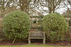 Stone bench (Simon Bath) Tags: house cold home leaves stone garden bench bush chair hedge gravel