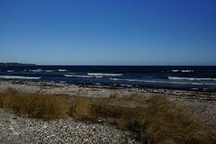 A walk on the beach (osto) Tags: denmark europa europe sony zealand scandinavia danmark slt a77 sjlland osto alpha77 osto april2016