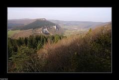 Belvdre sauvage au dessus des falaises du bois de ban de Nans sous sainte anne (francky25) Tags: de anne sainte au du des ban franchecomt bois falaises sous sauvage nans doubs dessus belvdre