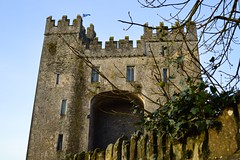 castle (Mr. Russell) Tags: ireland castle bunrattycastle bunratty countyclare