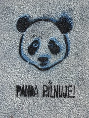 Targwek street art (stillunusual) Tags: travel urban streetart wall graffiti panda streetphotography poland polska wallart praga urbanart warsaw warszawa urbanlandscape urbanscenery 2015 travelphotography travelphoto urbanwalls travelphotograph wallporn graffitiporn pandapilnuje