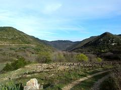 Le cirque de Labeil (brigeham34) Tags: mars france montagne rando eu paysage campagne vignes printemps falaises languedocroussillon hrault valle beautemps lauroux forts cirquedelabeil fz45 lescornichesdelauroux
