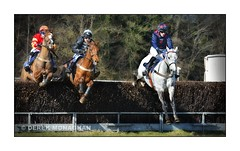 POINT TO POINT RACING_1 (Lucky Del) Tags: race scotland jockey horseracing 2016 pointtopoint clydevalley derekmonaghan overtonfarm