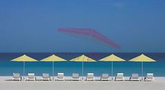 Plaj-Semsiyesi-38 (emsiye Evi) Tags: umbrella beachumbrella gardenumbrella patioumbrella plajemsiyesi bigumbrella umbrellahouse baheemsiyesi otelemsiyesi semsiyeevi