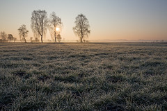 Misty Sunrise (Sebo23) Tags: fog sunrise nebel tau sonnenaufgang canon6d canon24704l