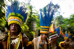 Dana tradicional para saudar os espritos da floresta (Jr Silgueiro) Tags: brasil natureza indios turismo cachoeira cultura matogrosso passeio aventura indigena paresi parecis utiariti juniorsilgueiro camponovodosparecis