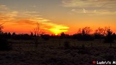 Fagnes - 25 - coucher du soleil (Ld\/) Tags: sunset sun soleil high belgium belgique belgie ardennen ardennes coucher eifel michel deco venn hoge hautes fagnes dcor hautesfagnes baraque fenn venen hohes waimes botrange jalhay hges weismes fagnard