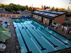 Swimming Pool (Photographing Travis) Tags: swimming google quad swimmingpool fitness gym googleplex