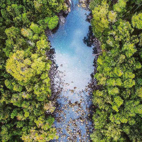 Bosques & agua By Cosmovisiones   Consulta por nuestros servicios audiovisuales www.cosmovisiones.cl  #rios # agua #neltume #huilohuilo #nikonchile #chile #aqua #three #forest #nationalgeographic