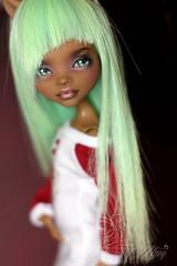 DPP_doll0047 (Emerald_Fairy) Tags: monster high doll ooak repaint dollphotography