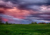 IMG_9019 A pink sunset on my land (pinktigger) Tags: sunset italy field landscape countryside italia country friuli nwn fagagna feagne