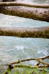 Acheron - Ammoudia (31) (clodyus) Tags: river fiume greece treetrunk grecia grce fleuve ioannina acheron epirus  troncdarbre souli epire  epiro troncodalbero    ipirosditikimakedonia