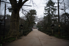 20160320-DSC_4230.jpg (d3_plus) Tags: park street sky plant flower nature japan nikon scenery daily bloom  streetphoto 28105mmf3545d toyama nikkor    dailyphoto   thesedays 28105    28105mm  zoomlense      28105mmf3545 toyamapref d700 281053545 nikond700 aiafzoomnikkor28105mmf3545d  28105mmf3545af aiafnikkor28105mmf3545d