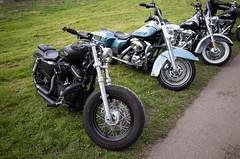 _R001324.jpg (Alain Stoll) Tags: bike indian motorbike harleydavidson bikers hellsangels tancrou