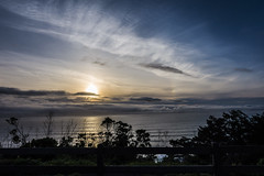 Driving Sunset (Xynalia) Tags: ocean california ca sunset plants tree nature water colors silhouette fog clouds outdoors bay flora waves glow foliage marincounty rays oceanscape