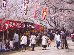() Tags: japan panasonic   sakura saitama   satte gx8 gongendo   14140ii