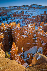 Bryce Canyon from above (dan sedran) Tags: travel blue winter orange mountain snow mountains southwest nature landscape outdoors landscapes nationalpark amazing rocks outdoor sony naturallight places roadtrip canyon hoodoo outback brycecanyon nationalparks americanwest nationalgeographic naturephotography rockformation brycecanyonnationalpark orangeglow landscapephotography traveldestinations placestosee snowcover landscapenature placestovisit sonyalpha amazingplaces amazinglandscapes sonya7