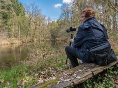 Warten auf den Eisvogel (AchimOWL) Tags: nature lumix see outdoor natur himmel wolken panasonic owl landschaft wald hdr gx8 eisvogel