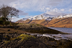 Wee Bonnie Scotland (Celebrating over 2 million views. Thank you) Tags: birthday friends mountains seaweed tree landscape happy scotland rocks view hills celebrations bonnie wee algae loch pitstop photodrive munroes