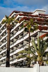 Spring Hotel Bitacora (Fjola Dogg) Tags: vacation holiday canon island hotel spain europe palm palmtrees tenerife evropa gisting evrpa plmatr springhotelbitacora canonpowershotg7x canong7x