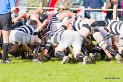 Matson V Coney Hill Semi Final 2016-14 (Shaun Lafferty) Tags: cup sports sport ball outdoors nikon action rugby hill group gloucestershire gloucester clubs z coney tamron matson combination rfc rfu rugbyunion d7000 d7200 matsonrfu