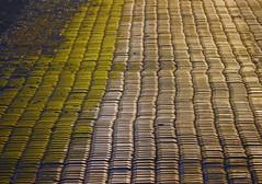 ViBRATion. (Warmoezenier) Tags: sea stones zeeland zee dijk protection beton vibration oosterschelde bescherming