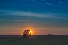Sun Sets Behind The Trees (k009034) Tags: trees sunset summer sky people sun silhouette night clouds rural finland evening countryside shadows midsummer dusk no space nopeople scene fields copyspace agriculture copy tranquil tranquilscene oulainen 500px teamcanon matkaniva