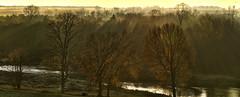 Last of the fall colours (virgil martin) Tags: panorama mist ontario canada river landscape fallcolors gimp grandriver goldenhour morningmist westmontrose microsoftice oloneo olympusomdem5