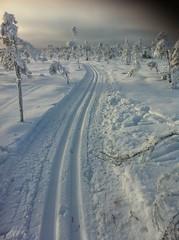 Snow track! Blängsmossen Billingen (Göran Nyholm) Tags: