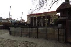 50 - 2015 12 26 - Nieuwe speeltuin met vosmangoestenverblijf