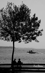 How long is the meeting to reflect on calm seas together (zaid_alwttar) Tags: bw turkey istanbul