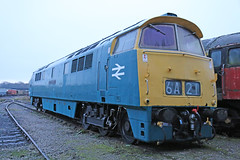 D1048 Western Lady (Andrew Edkins) Tags: uk winter england canon geotagged photo derbyshire shed january western locomotive maybach preservedrailway midlandrailwaycentre brblue class52 whizzo swanwickjunction westernlady d1048 railwayphotography