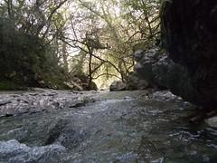 2016.02.21_OlhosAgua_Alcanena_1920x_055 (PatricioDomingues) Tags: portugal water água olhosdeagua alviela 20160221