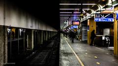 Gare de Lyon (eddy_737) Tags: city travel shadow urban contrast train canon underground 50mm transport trainstation rails 365 rer sncf project365