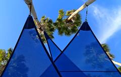 Blue Shade (HALLDOR_K) Tags: blue winter usa triangles florida january shapes explore palmtrees shade tarponsprings canon6d