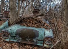 DSC08538.ARW-01 (juice95m3) Tags: abandoned rust vintagecar automobile junkyard oldcars classiccars