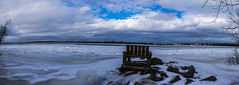 4 February 2016 (runningman1958) Tags: winter panorama nature nikon 365 petrie winterscene petrieisland 365dayproject d7200 nikond7200