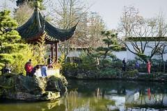 Sun Yat-Sen Garden in Vancouver's Chinatown. (Sid the Kid2010) Tags: vancouver sunyatsengarden outdoorgarden vancouverchinatown