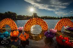 Water Dragon (Triebels Photography) Tags: park christchurch summer cloud sun lake reflection water festival pond dragon lotus chinese canterbury sunburst lantern 2016 nzsummer