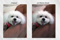 dog photoshop frances arthistorybrush