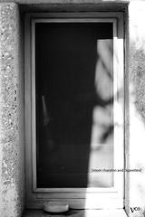 [moet chandon and cigarettes] (Nico Coratella) Tags: windows blackandwhite canon italia champagne finestra cigarettes puglia bianconero fumo moetchandon sigarette 60d