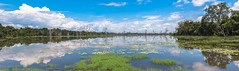 Wild Mirror (Guillaume Desfeux) Tags: blue trees wild sky lake reflection water clouds landscape mirror cambodia outdoor
