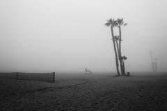 """Lawrence of California"" (helmet13) Tags: california morning people bw usa beach fog fence sand raw tent palmtree diffuse sealbeach aoi 100faves peaceaward heartaward world100f platinumpeaceaward d800e"